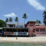 dive point koh tao