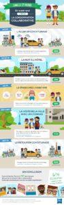 Infographie Ibis