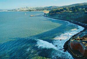 San Francisco's bay