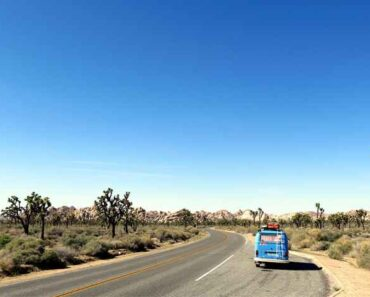Road trip en voiture
