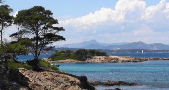 Camping Île de Porquerolles