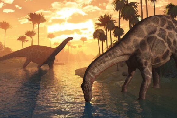 dinosaures Turkmenistan