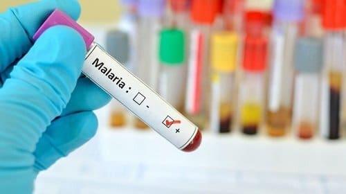 malaria moustique precaution