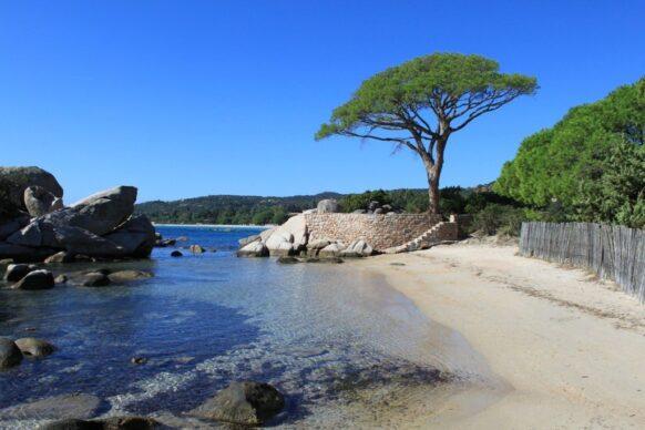 aller en Corse cet été