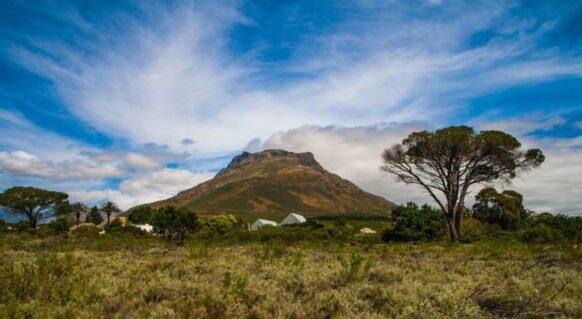 délices de Stellenbosch et Franschhoek