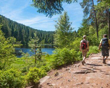 randonnée Forêt-Noire